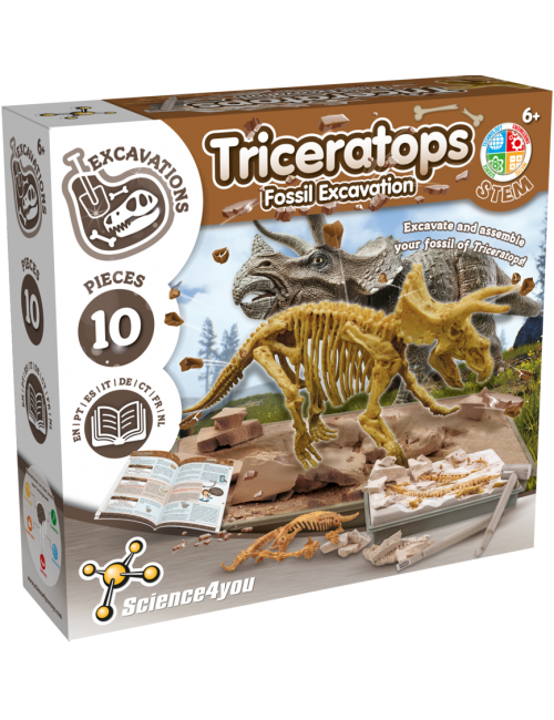 Triceratops - Fossil...