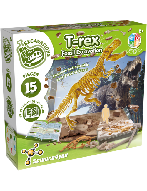 T-Rex - Fossil Excavation