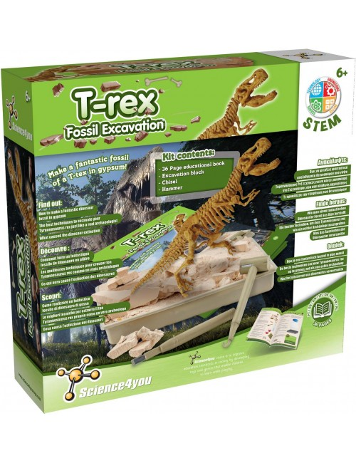 Fossil Excavation T-Rex